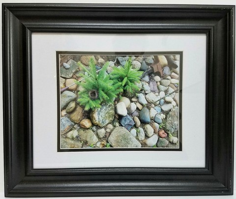 JESPY Shop Photographic Print - The Stone Garden