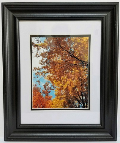 JESPY Shop Photographic Print - Golden Autumn Leaves